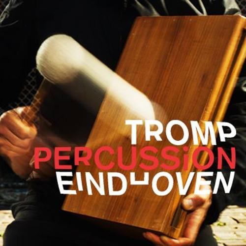 TROMP Percussion_public's avatar