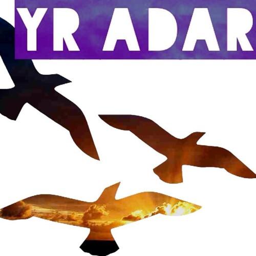 Yr Adar's avatar