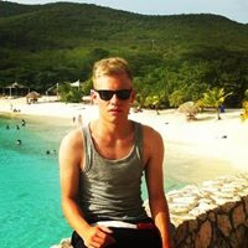 Niklas Segieth's avatar