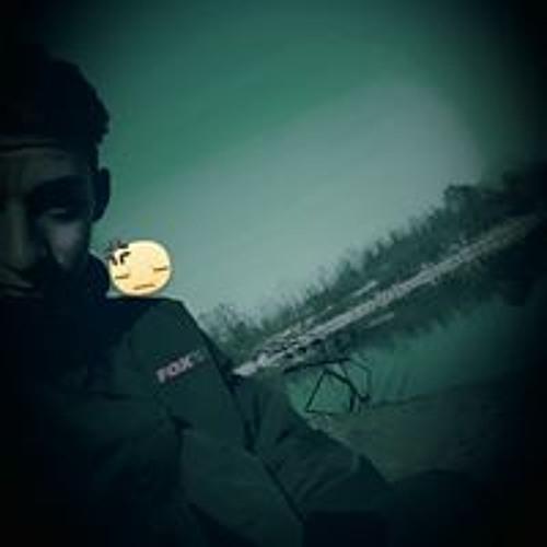 Luca Bertoletti's avatar