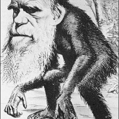 Master Ape's avatar