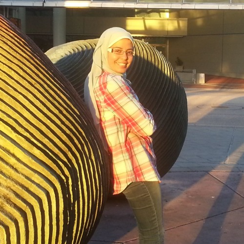 Dina Kamal Arafa's avatar