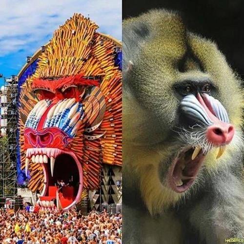 El Monkey's avatar