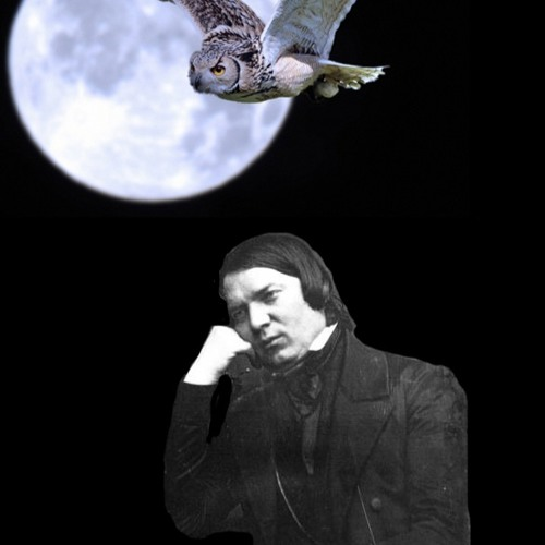 Schumanns Nacht's avatar