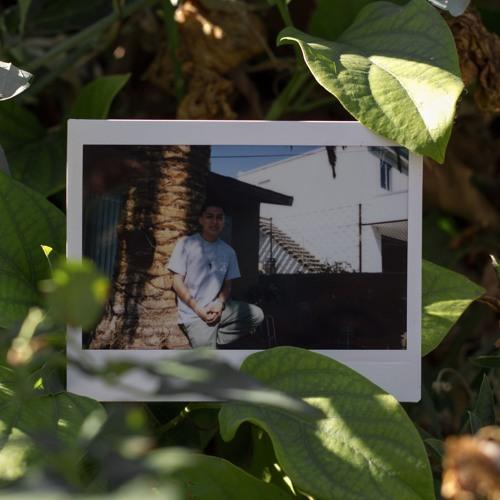 JayBasher's avatar
