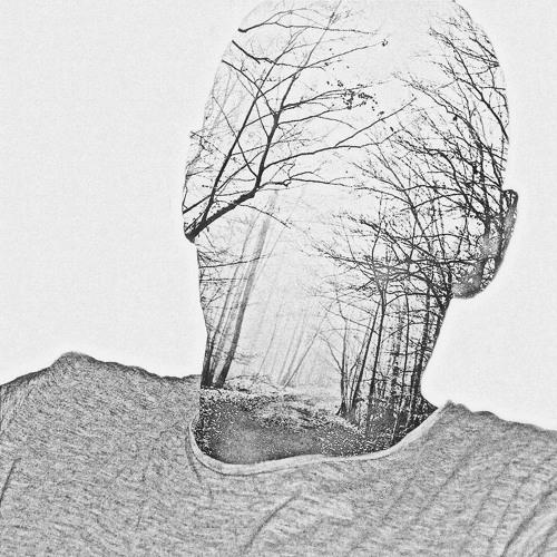 Ahmed Sadek's avatar