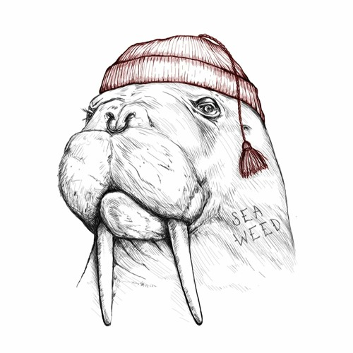 Seaweed Records's avatar