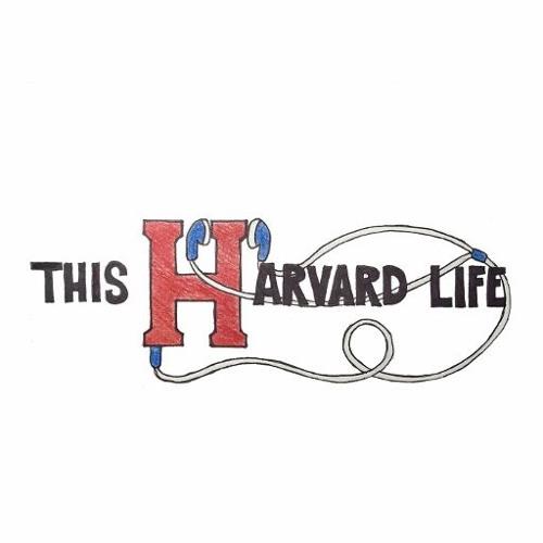 This Harvard Life's avatar