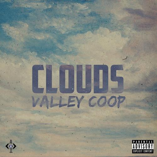 Valley Coop's avatar