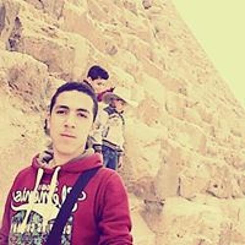 Ahmed Sameh's avatar