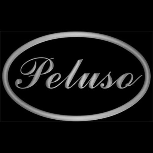 Peluso Microphone Lab's avatar