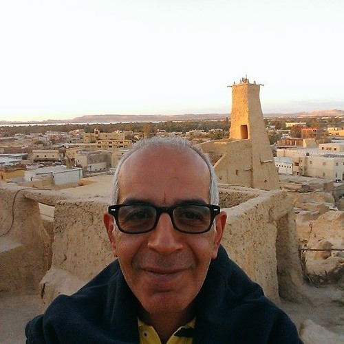Mohamed Hamed El-ayouty's avatar