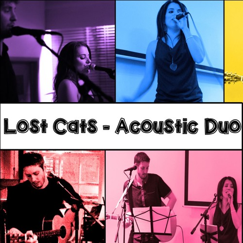 Lost Cats Acoustic Duo's avatar