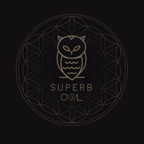 Julien Superb-Owl's avatar