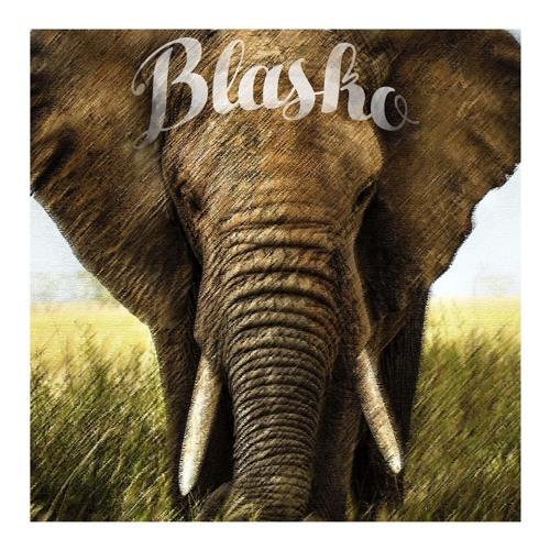 BLASKO's avatar