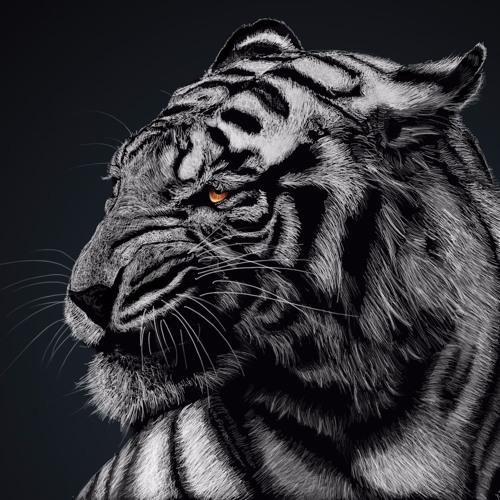 INDER's avatar