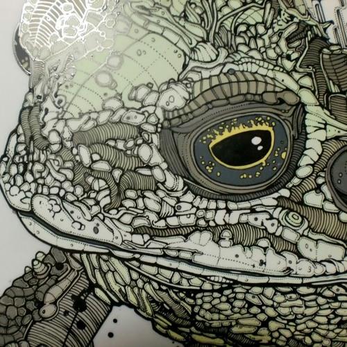 little frog's avatar