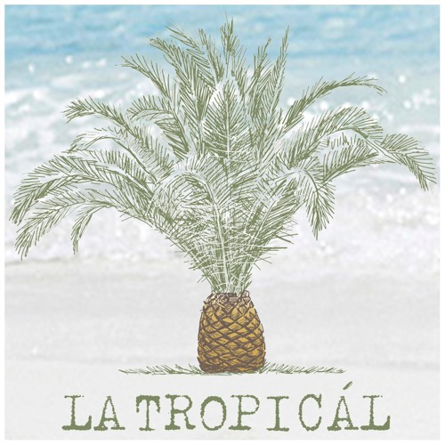 La Tropicál Mixes's avatar