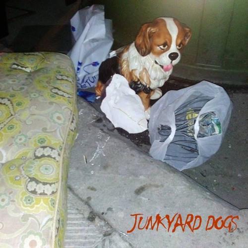 junkyard dogs's avatar