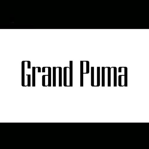 Grand Puma's avatar