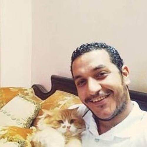 Sherif El-Genedy's avatar