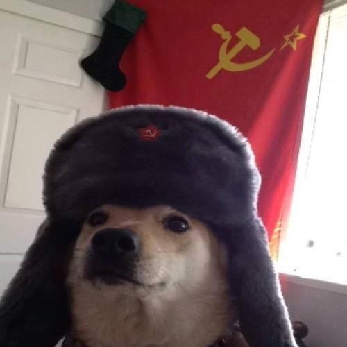 The russian ebola's avatar