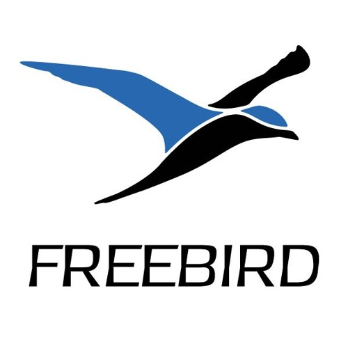 FreeBird - Clouds don't cry