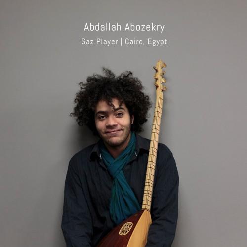Abdallah Abozekry's avatar