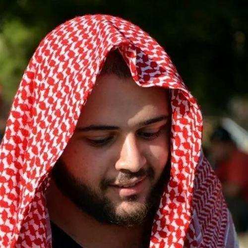 Hady Srour's avatar