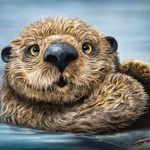 Dayo Otter's avatar