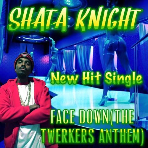 shata_knight's avatar