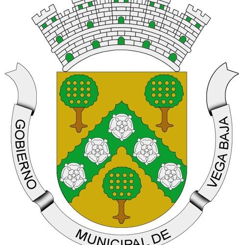 Mun. de Vega Baja oficial's avatar