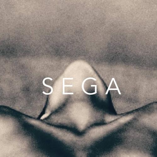S E G A's avatar