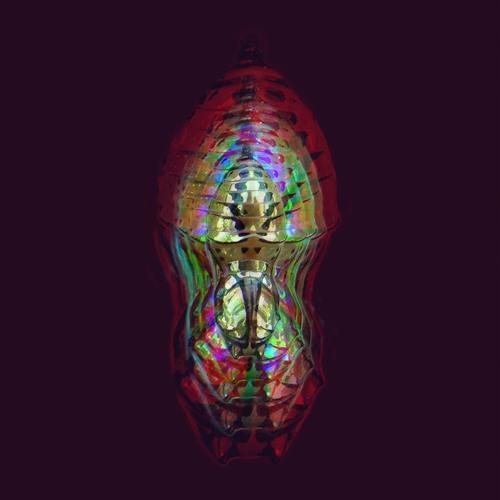 Fusée Dorée's avatar