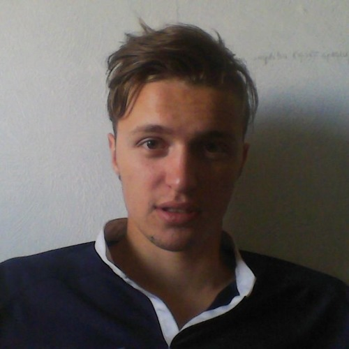 Artis Lapa's avatar