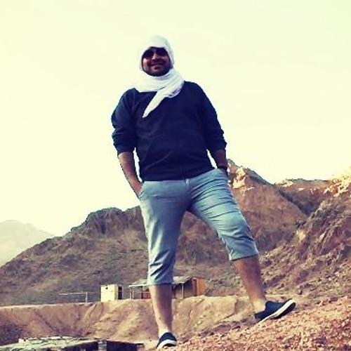 Mohamed Elsharqawy's avatar