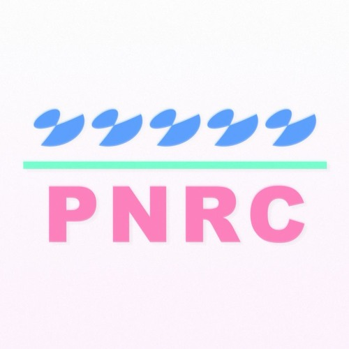 Purple Noise Record Club's avatar