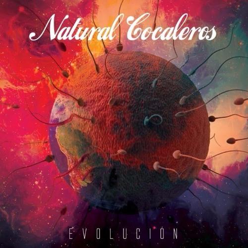 NATURAL COCALEROS's avatar