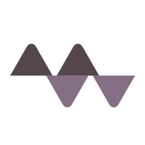 Mattijs Muller's avatar