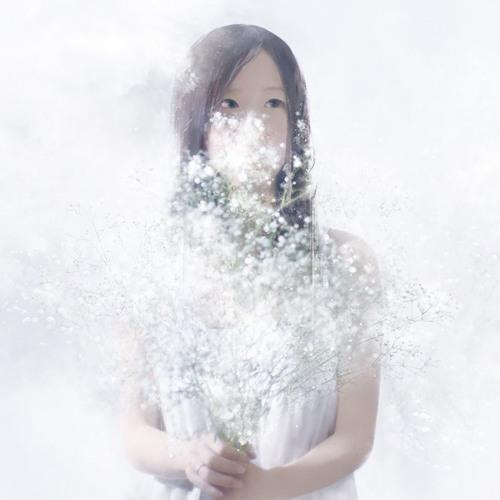 miamoeba's avatar