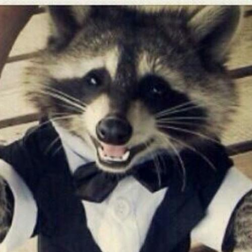 Daft Raccoon's avatar