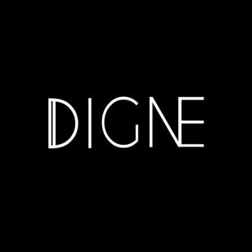 DIGNE's avatar