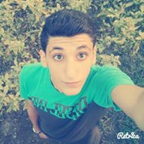 Hazem M. Ibrahim's avatar