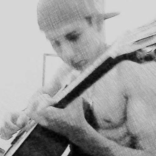 Luis Fernando Lopes's avatar