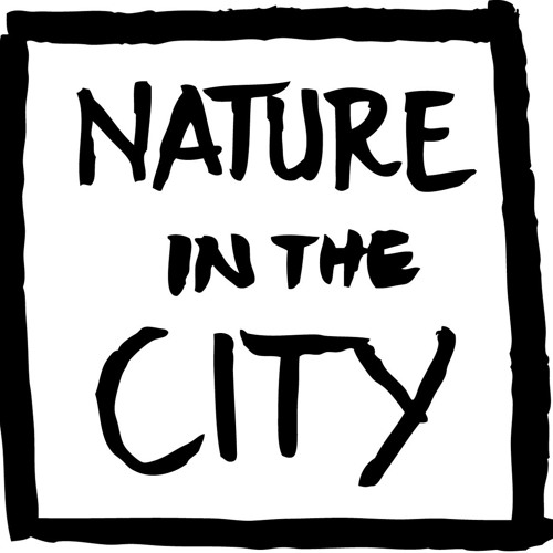 Nature in the City's avatar