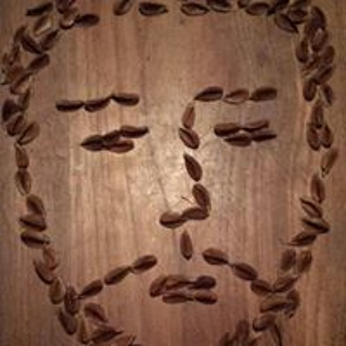 Leo Erken's avatar