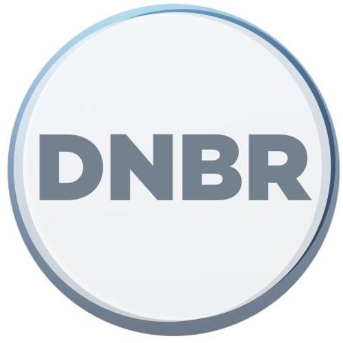 DNBR's avatar