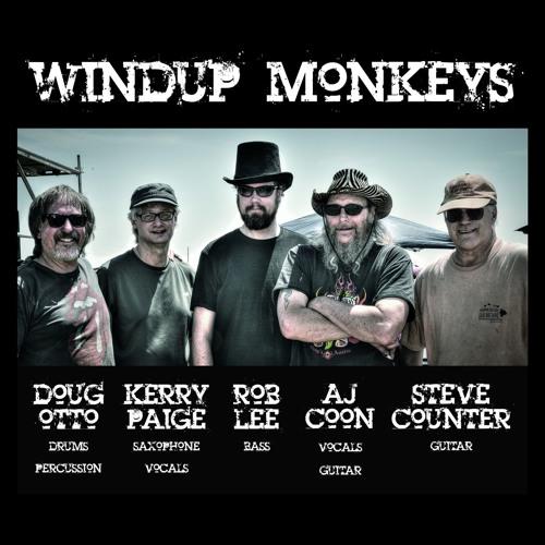 Windup Monkeys's avatar