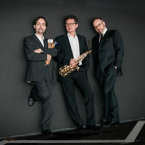 Trio Accanto's avatar