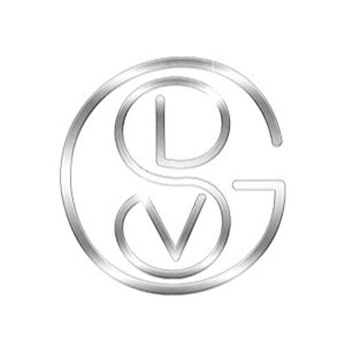 DSV Group's avatar